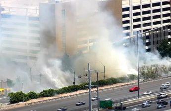 Dedaunan terletak di sepanjang Interstate 15 di Las Vegas, Nevada, terbakar pada hari Sabtu di dekat Bellagio Hotel and Casino